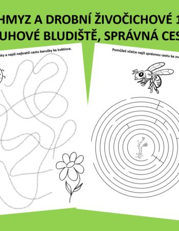Pracovní listy - hmyz a drobní živočichové 1